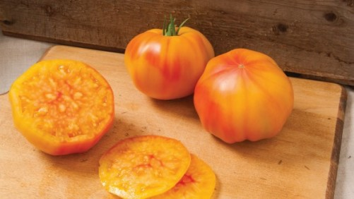 The Latest Vegetable Varieties For Covered Production