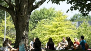 Counting Down The Top U.S. Colleges For Natural Resources And Conservation