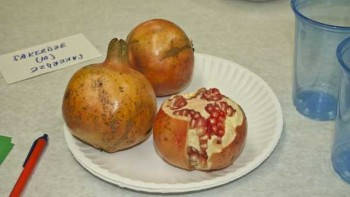 A plate of Florida pomegranates