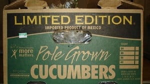 CDC: Salmonella Outbreak Linked To Imported Cucumbers Is Over