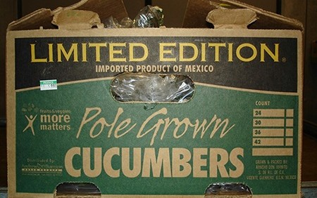 Imported Cucumbers Connected With Multistate Outbreak Of Salmonella