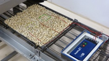 Salmonella-inoculated and instrumented pistachios enter the pilot-scale oven in the Michigan State University Biosafety Level-2 Pilot Plant, as part of a research project aimed at improving process validation methods. Photo: Michael James