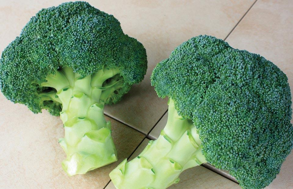 Broccoli Coffee Is Here