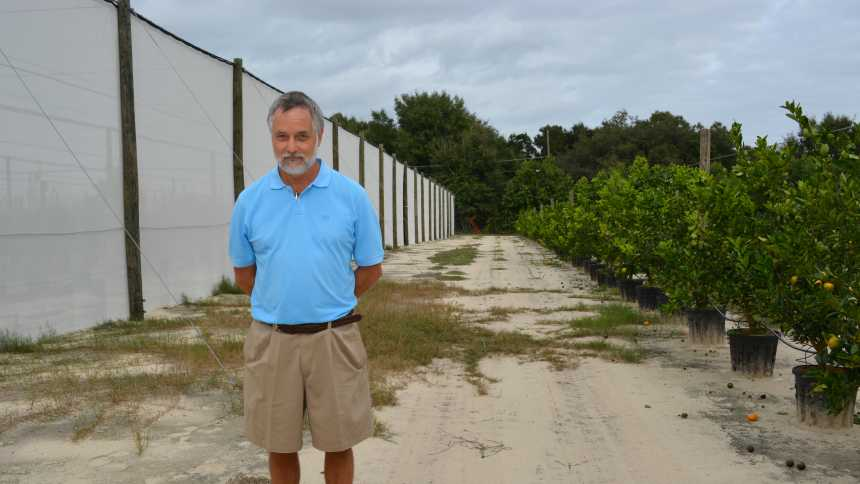 Arnold Schumann, UF/IFAS CREC, stands next to a citrus screenhouse structure
