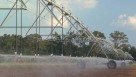 Center pivot irrigation sprinklers in Florida