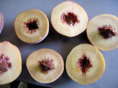 When some varieties are stored incorrectly, they will develop a mealy, dry texture. (Photo credit: Bill Shane)