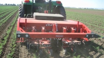Other technological developments include automated harvesters for salad plant lettuce.