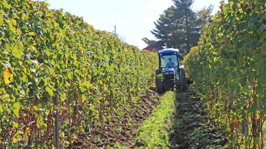 Maximize the Benefit of New Farm Technology