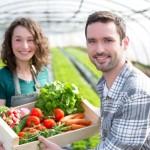 View of a Farmer teaching new employee to gardening