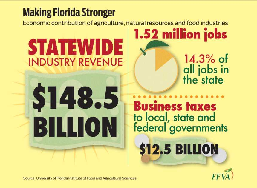 Infographic from FFVA about the economic contribution of agriculture, natural resources, and food industries to the state of Florida