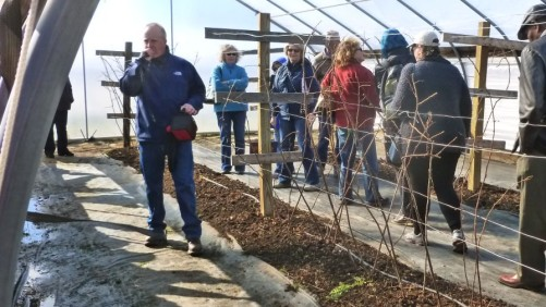 Longtime  American Fruit Grower Contributor Honored For Work In Berries