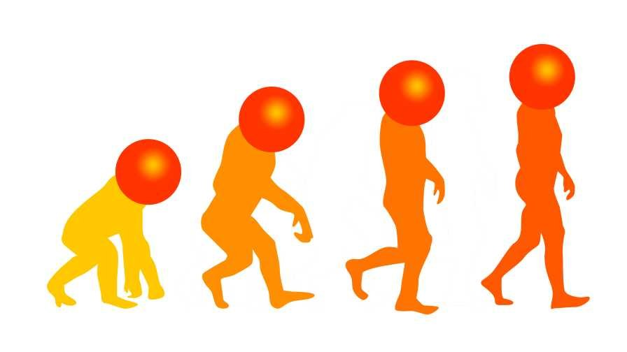 Humorous take on the theory of evolution for citrus