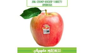 'Ambrosia' Apple Takes Tournament