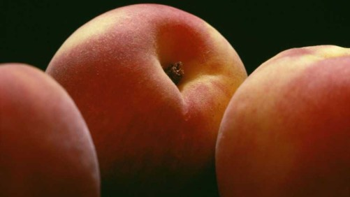 Which Peaches are Better: Georgia or South Carolina?