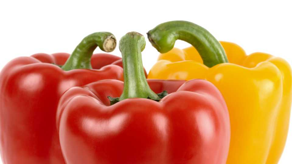 trio of sweet bell peppers
