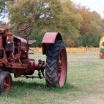 Antique tractor at Burnham Orchard FEATURE