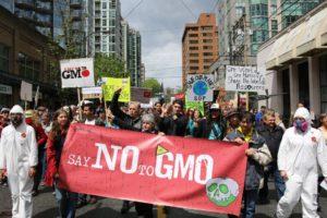 Crowd protesting GMOs stock image