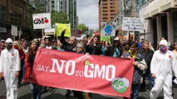 Crowd protesting GMOs stock image FEATURE