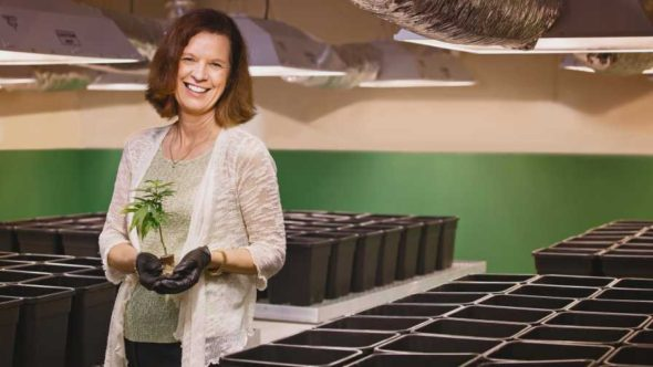 Susan Driscoll of Surterra Therapeutics holding a cannabis plant in her company's cultivation facility
