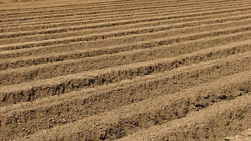 New Biological Soil Amendment Launched for Growers