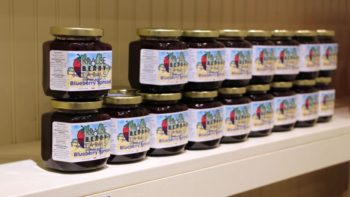 Krause Berry Farms No-Sugar Added Blueberry Spread FEATURE