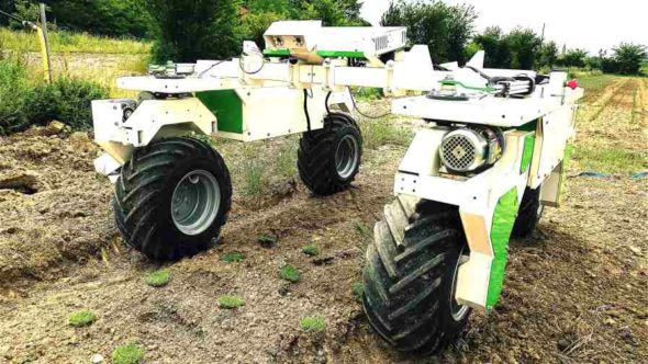 A new robotic weeder has been developed by France-based Naïo Technologies and is making its debut four years after the launch of the company's autonomous weeding robot for small farmers, called Oz. The new robot, Dino, however, is designed for vegetable farms with 24 acres or more, and is now available worldwide.