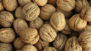 Spike In Production Causes Drop In Walnut Prices