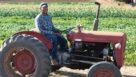 Organic farmer on tractor