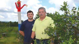 Bird Damage Plagues Most Fruit Growers