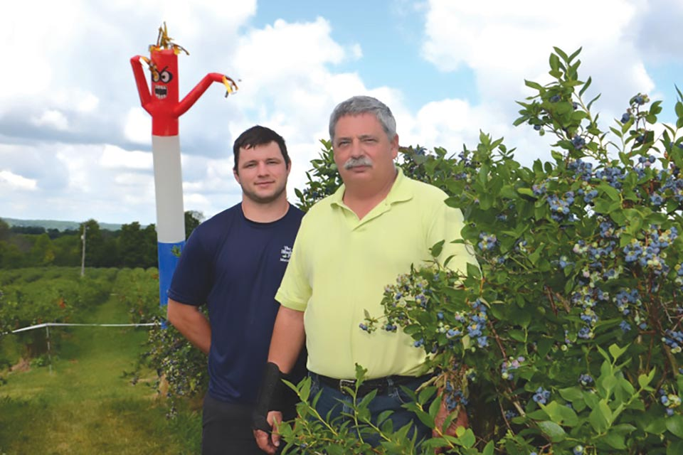 Andrew (left) and Steve Beilstein use an air dancer, pictured in the background, as a bird-scaring device at The Blueberry Patch in Lexington, OH. (Photo credit: Gary Gao)