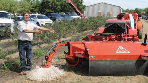 Don't Bite The Dust In Your Almond Orchard