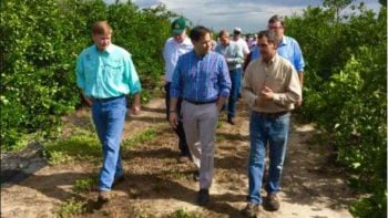 Marco Rubio tours a Central Florida citrus grove with industry dignitaries