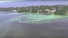 South Florida algal bloom from the air near Stuart, FL