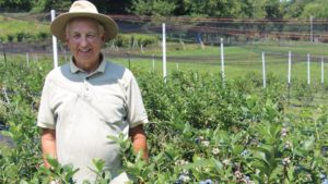 Pick-Your-Own Pointers From Expert Blueberry Grower