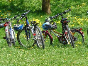 Farm bike tour free image