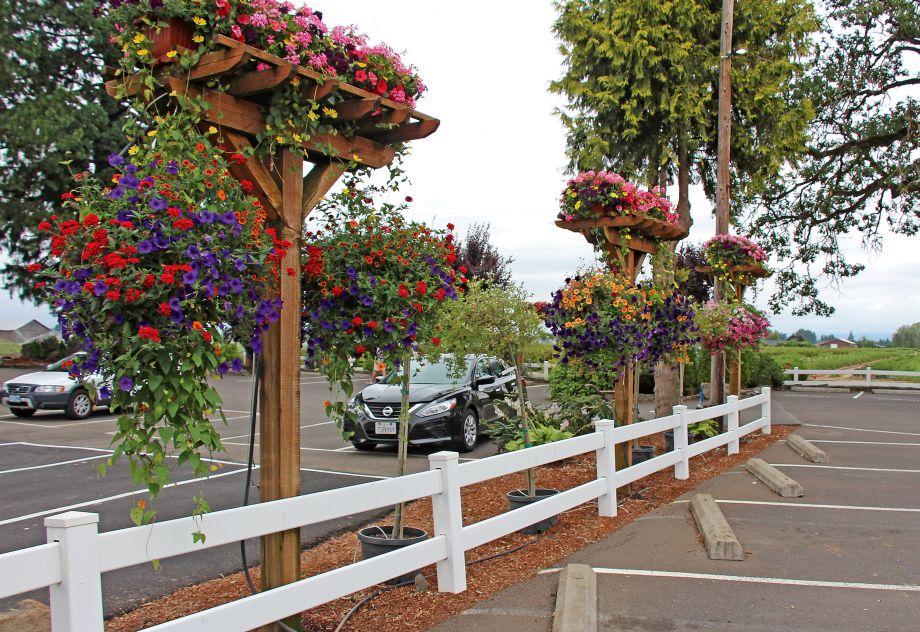 Parking Lot Displays Bauman Farms