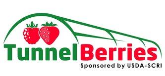 tunnelberries