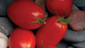 4 Tasty Tomatoes Guaranteed To Tempt Consumers