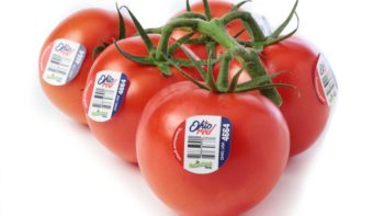 NatureFresh has been shipping 'OhioRed' tomato on the vine (TOV) from Delta since February and will begin shipping an extensive array of specialty tomatoes from Ohio starting in mid-November.