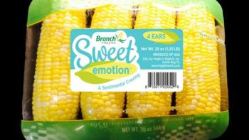 Sweet Emotion sweet corn