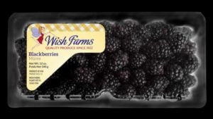 Wish Farms Going Bigger, Bolder With Blackberries
