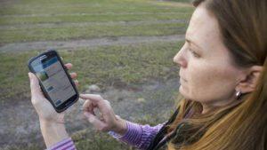 Irrigation App Apt To Save Avocado Growers Time, Money