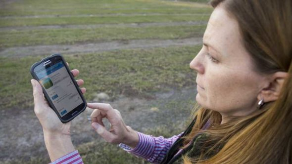 SmartIrrigation Avocado app being used in the field
