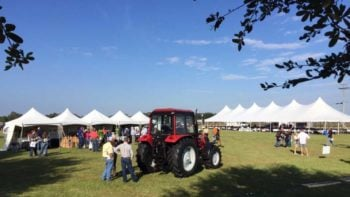 Sunny morning outside at the 2016 Florida Ag Expo