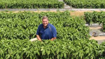 Jason Kuehnle of Michigan-based Golden Plain Farms found his niche growing peppers. Photo credit: Christina Herrick