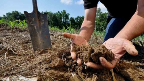 Climate Change Drives New Healthy Soils Program