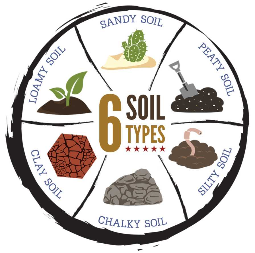 How soil type affects land values growing produce for Information about different types of soil