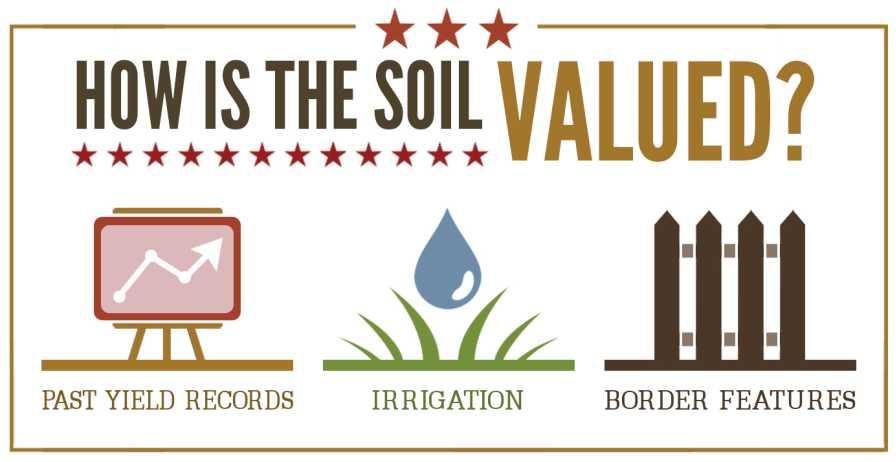 Soil value infographic