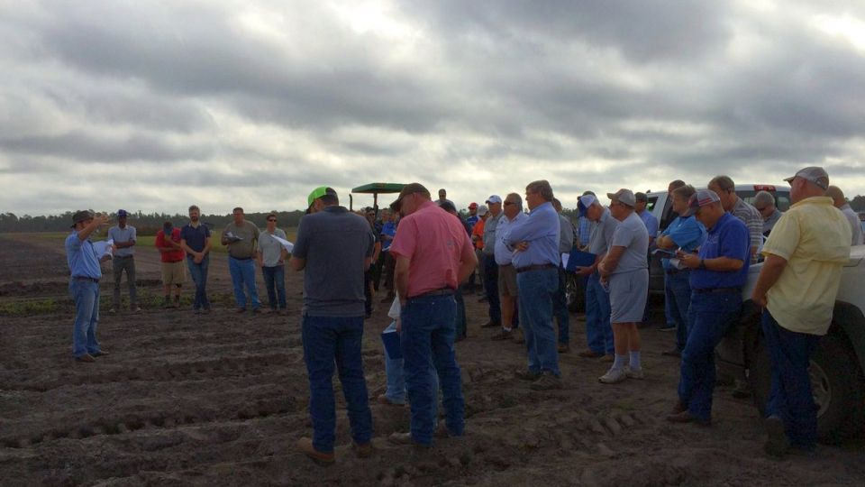 Lincoln Zotarelli holds court during Florida cabbage field day