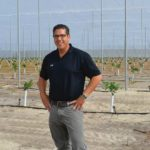 Ed Pines citrus grower
